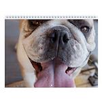 "Bulldog Wall Calendar "" I """