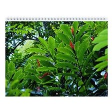 Hawaii Tropical Flowers Wall Calendar