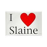 Support Slaine Rectangle Magnet (10 pack)
