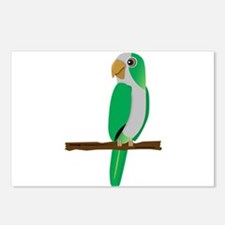 Quaker Parrot Postcards (Package of 8)