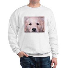 GOLDEN RETRIEVER PUPPY SOFTIE Sweatshirt