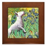 Irises / Bully #3 Framed Tile