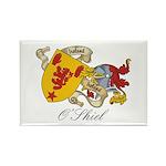 O'Shiel Family Sept Rectangle Magnet (10 pack)