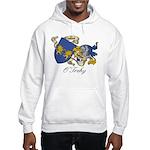 O'Trehy Family Sept Hooded Sweatshirt