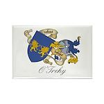 O'Trehy Family Sept Rectangle Magnet (10 pack)