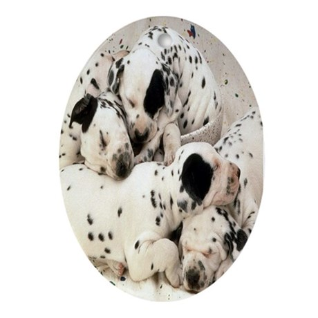 DALMATION PUPPY PILE Ornament (Oval)