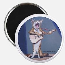 Folk Singer/Guitar Player Cat Magnet