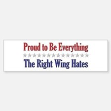 Everything They Hate Bumper Car Car Sticker