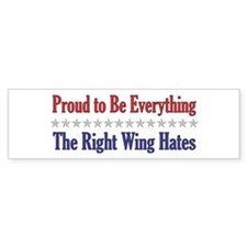 Everything They Hate Bumper Car Sticker