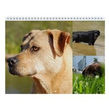 "Labrador Retriever Wall Calendar ""I"""