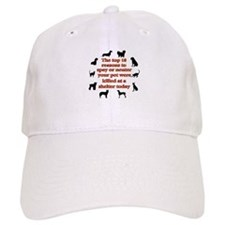 The top 10 reasons to spay or Baseball Cap