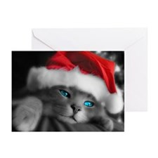 SANTA KITTY Greeting Cards (Pk of 20)