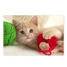YARN KITTY Postcards (Package of 8)
