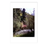 Autumn in Taos Postcards (Package of 8)