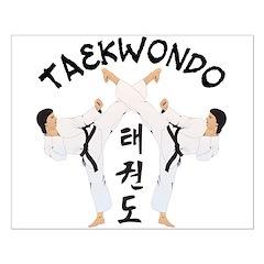 Taekwondo Posters