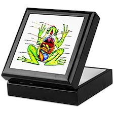 Frog Anatomy Keepsake Box