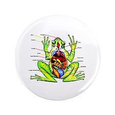 "Frog Anatomy 3.5"" Button"