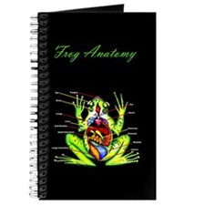 Frog Anatomy Journal