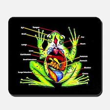 frog anatomy mousepad anatomy office