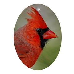 Cardinal Christmas Ornament (oval)