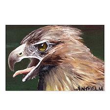 Golden Eagle Postcards (Package of 8)