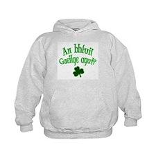 Speak Irish? Hoodie