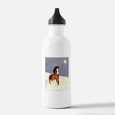 Starlight Snow Run Water Bottle