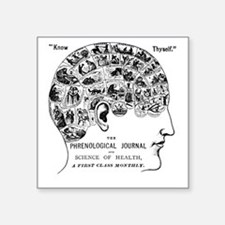 know thyself phrenology head Sticker