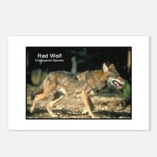 Red Wolf Photo Postcards (Package of 8)