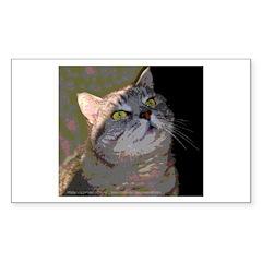 Morning Light Tabby Cat Rectangle Decal