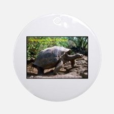 Galapagos Giant Tortoise Photo Ornament (Round)