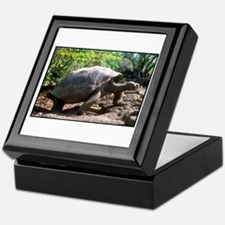 Galapagos Giant Tortoise Photo Keepsake Box