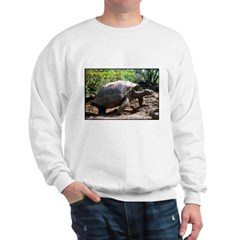 Galapagos Tortoise Photo (Front) Sweatshirt