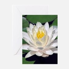 White Lotus Vertical Greeting Cards (10)