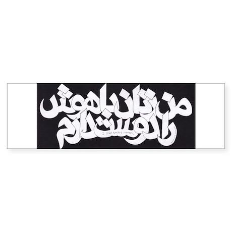 """I LikeSmart Women"" in Farsi Sticker Lrg"