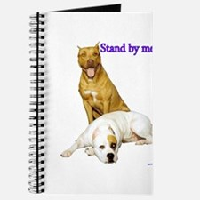 Stand By Journal