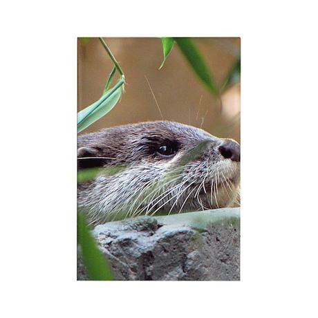 Resting Otter Vertical Magnet
