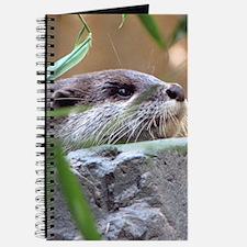 Resting Otter Journal