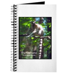 Ring-Tailed Lemur Photo Journal