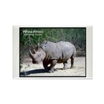 White Rhino Rhinoceros Photo Rectangle Magnet (10