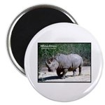 White Rhino Rhinoceros Photo Magnet