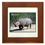 White Rhino Rhinoceros Photo Framed Tile