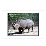 White Rhino Rhinoceros Photo Postcards (Package of