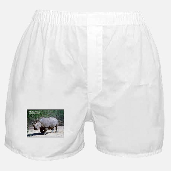 White Rhino Rhinoceros Photo Boxer Shorts