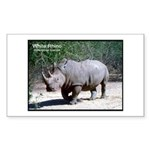 White Rhino Rhinoceros Photo Rectangle Sticker