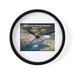 Florida Manatee Photo Wall Clock
