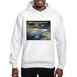 Florida Manatee Photo Hooded Sweatshirt