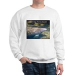 Florida Manatee Photo Sweatshirt