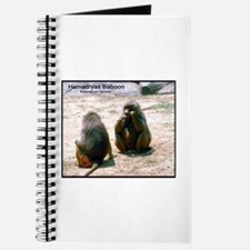 Hamadryas Baboon Photo Journal