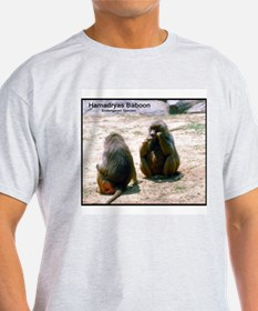 Hamadryas Baboon Photo (Front) Ash Grey T-Shirt